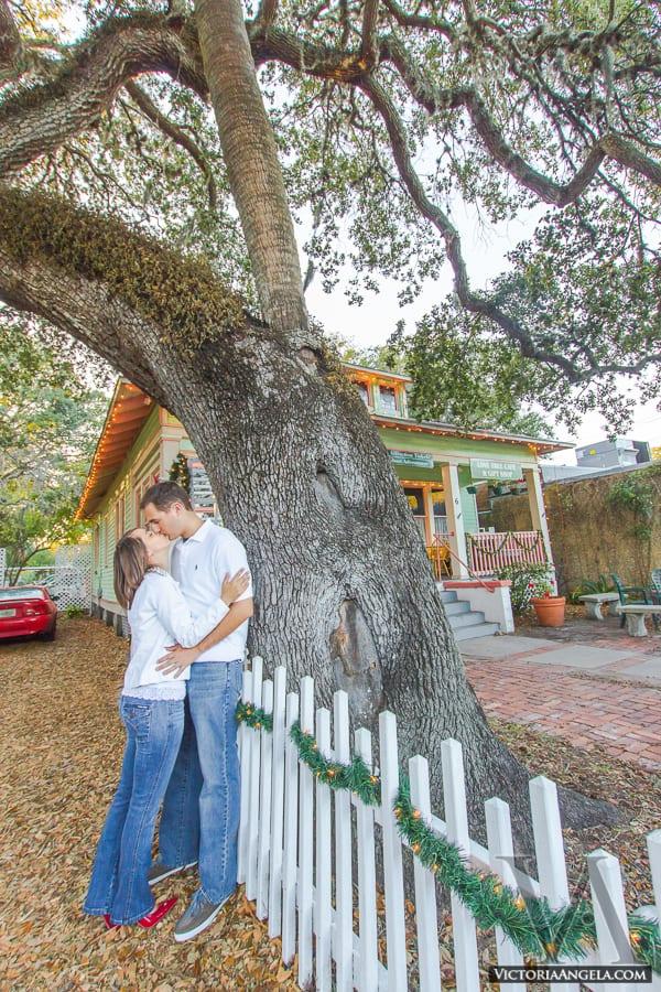 Love Tree Proposal   St. Augustine proposal ideas   Treasury on the Plaza